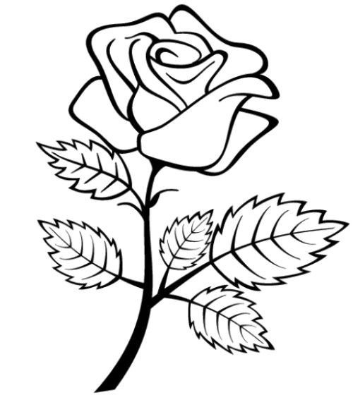 Flowers Roses Coloring-Pages-For-Preschool