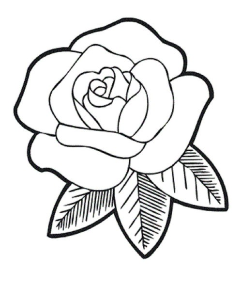 Free-Traceable-Roses
