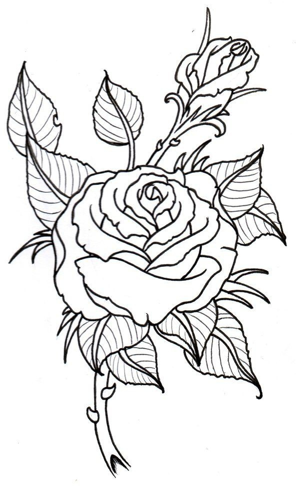 Roses-Tattoo-Drawing